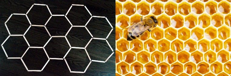 craft sticks form hexagon pattern. Next to it is a picture of the bee hive, also a hexagon pattern.
