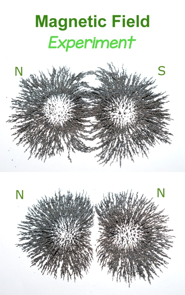 iron filings show the magnetic field shapes in this Magnetic field experiment