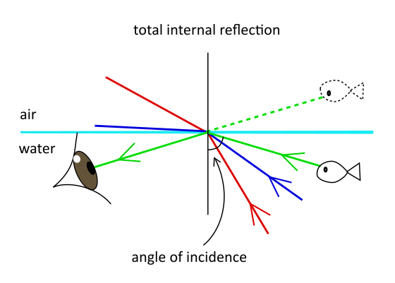 Refraction: total internal reflection