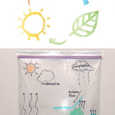 Water Cycle In A Bag | Simple Science Experiment For Kids