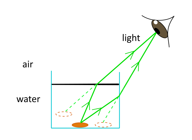 An illustration of refraction of light from a coin to the eye, turning the image of 1 coin into 2 coins.