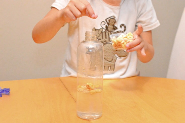 iron cereal science project
