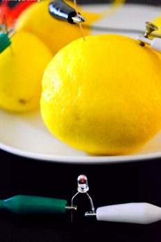 Power up a light bulb using lemons! Homemade battery using lemons, nails and wires. It's so simple. Show your kids how electric current can be generated.