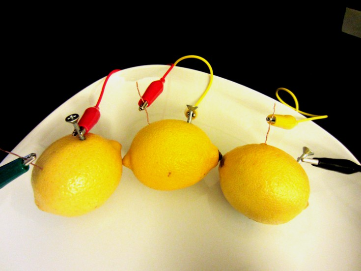 Connect 3 lemons together using nails, coppers and alligator clips to form a chain