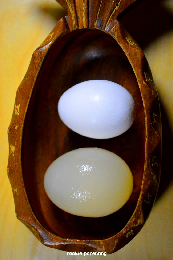 two raw eggs, one before experiment and one after experiment