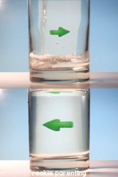 Refraction Science Experiment