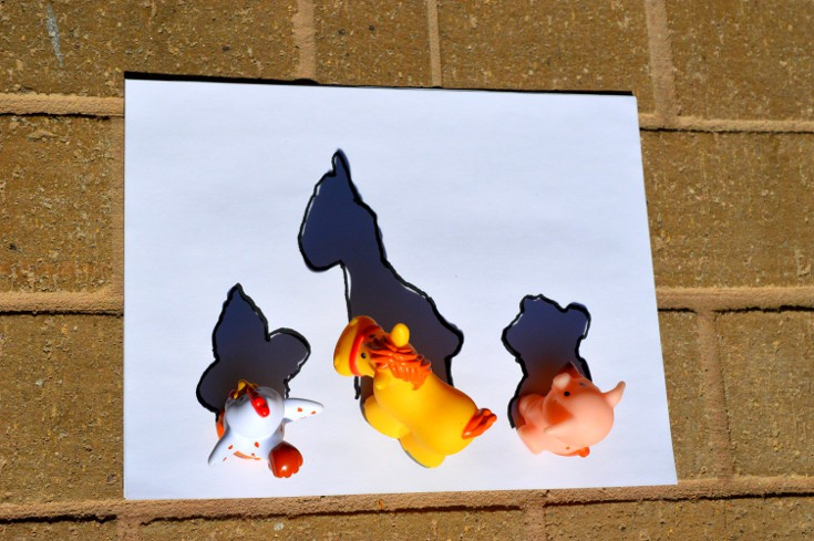 3 toy animals with shadow on a piece of paper, marker traces the outline of shadows to show how light travels in a straight line