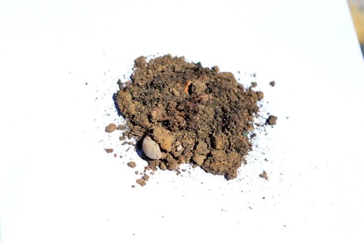 Soil on paper