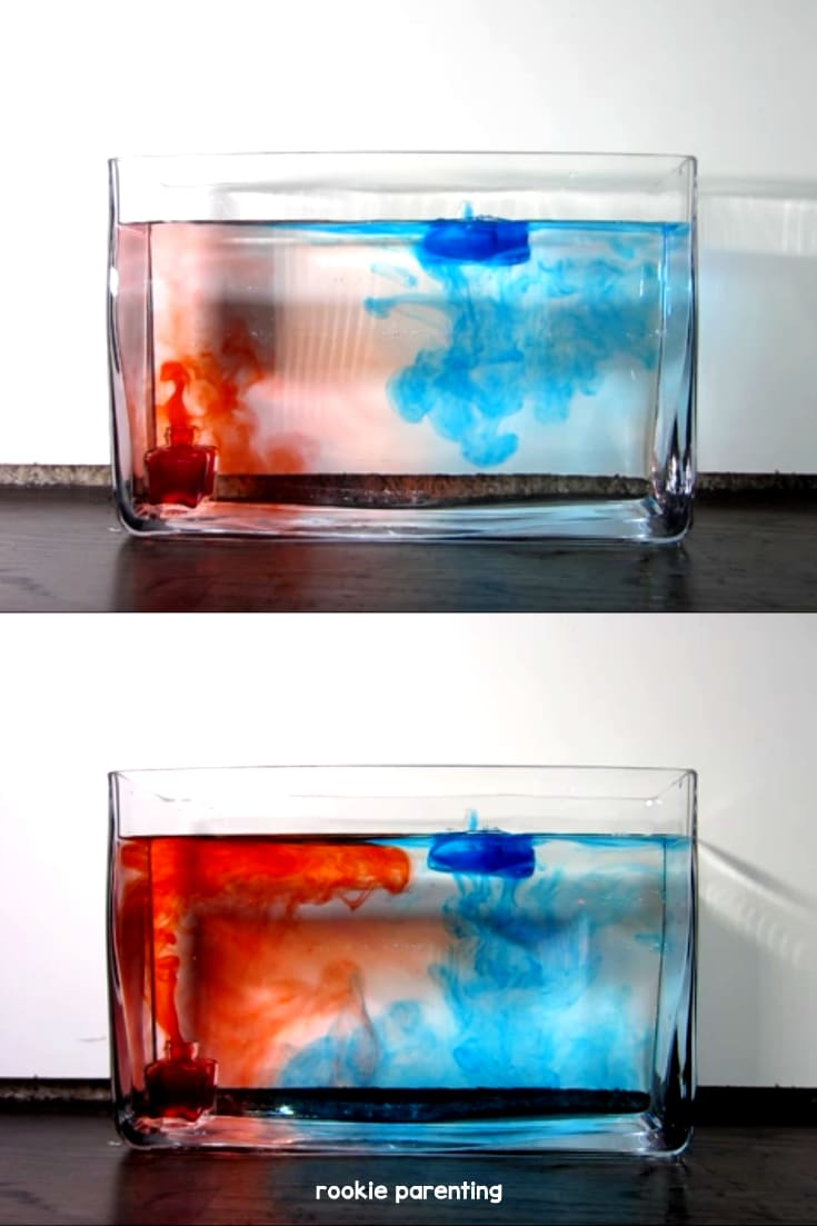 pictures illustrating convection: red water floats from bottom to top, blue water sinks from top to bottom